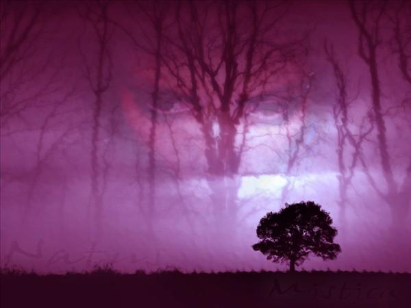 colores violeta: