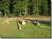 11-06-07 logging behind barn 003
